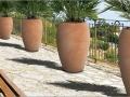 chamaerops poteries terre cuite